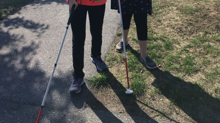 Image of two people using white canes to navigate along the sidewalk which runs through a park.