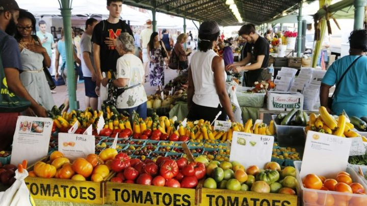 Image of some booths at a Farmer's Market, one booth selling fresh tomatoes in the foreground while people mill around and browse.
