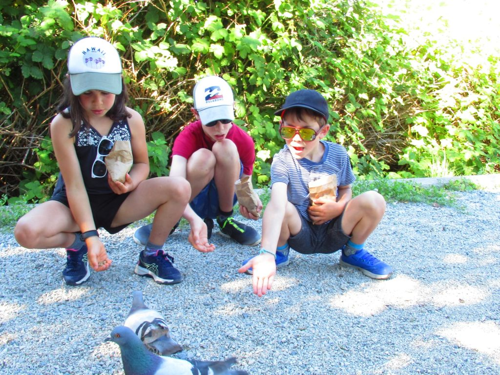 three children bend down on the gravel with their hands out wide with birdseed. Pigeons are in front of their hands, curious about the food.